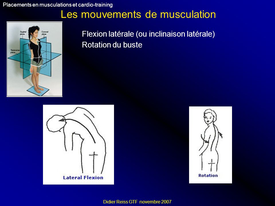 Les mouvements de musculation Placements en musculations et cardio-training Didier Reiss GTF novembre 2007 Flexion latérale (ou inclinaison latérale)