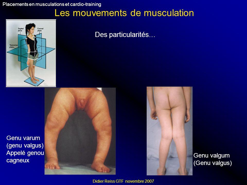 Les mouvements de musculation Placements en musculations et cardio-training Didier Reiss GTF novembre 2007 Des particularités… Genu valgum (Genu valgus) Genu varum (genu valgus) Appelé genou cagneux