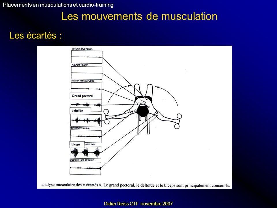 Les mouvements de musculation Placements en musculations et cardio-training Didier Reiss GTF novembre 2007 Les écartés :