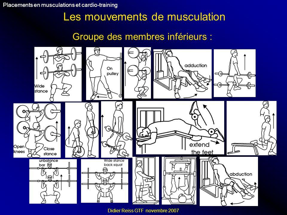Les mouvements de musculation Placements en musculations et cardio-training Didier Reiss GTF novembre 2007 Groupe des membres inférieurs :