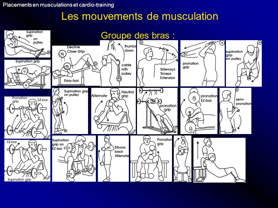 Les mouvements de musculation Placements en musculations et cardio-training Groupe des bras :