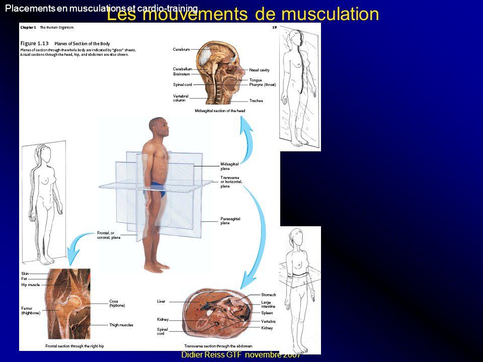 Les mouvements de musculation Placements en musculations et cardio-training Didier Reiss GTF novembre 2007 Flexion (flectere = fléchir) : rapproche le segment de membre du corps dun autre segment Extension (extendre = étendre) : éloigne le segment de membre du corps dun autre segment