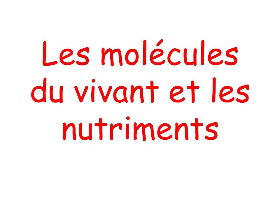 Introduction Molécules du vivant (synthétisées par les cellules): Glucides, protéines, lipides Presque toujours C, H, O et N Synthétisées par la cellule ou apportées par lalimentation (nutriments)