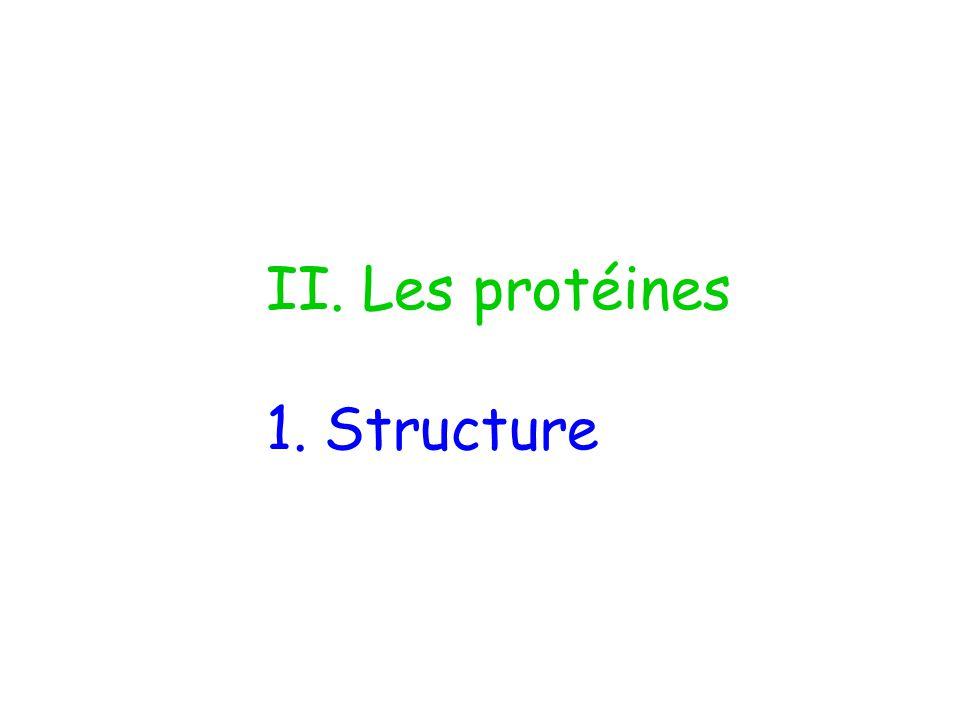 II. Les protéines 1. Structure