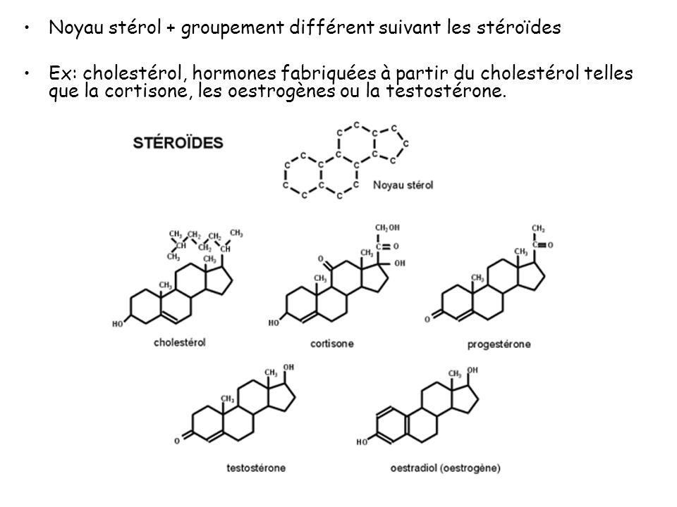 Noyau stérol + groupement différent suivant les stéroïdes Ex: cholestérol, hormones fabriquées à partir du cholestérol telles que la cortisone, les oestrogènes ou la testostérone.