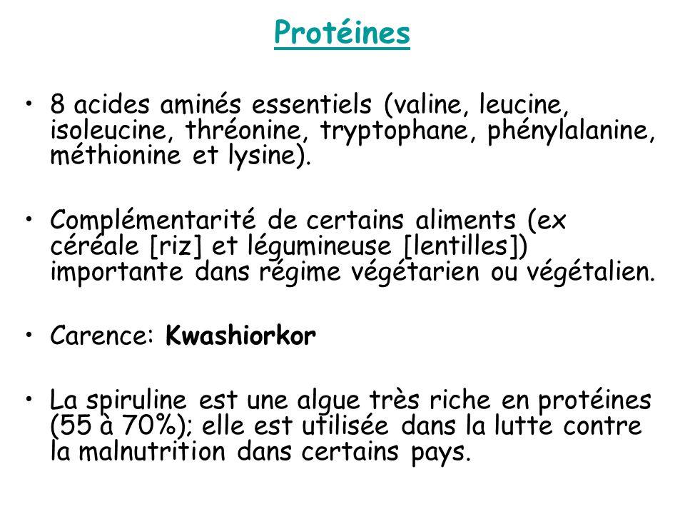 Protéines 8 acides aminés essentiels (valine, leucine, isoleucine, thréonine, tryptophane, phénylalanine, méthionine et lysine).