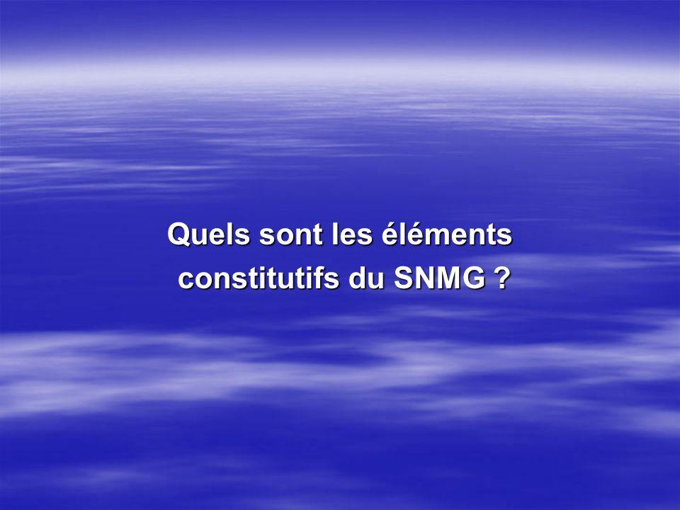Quels sont les éléments constitutifs du SNMG ? constitutifs du SNMG ?