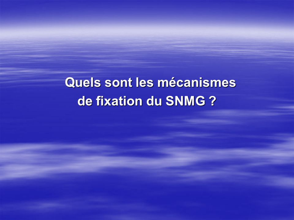Quels sont les mécanismes Quels sont les mécanismes de fixation du SNMG ?