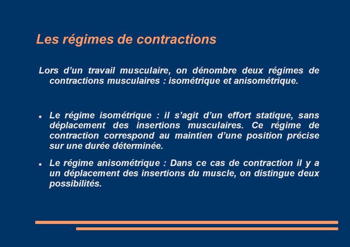 Les régimes de contractions Lors dun travail musculaire, on dénombre deux régimes de contractions musculaires : isométrique et anisométrique. Le régim