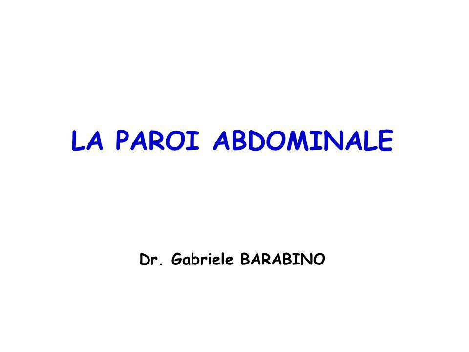 LA PAROI ABDOMINALE Dr. Gabriele BARABINO