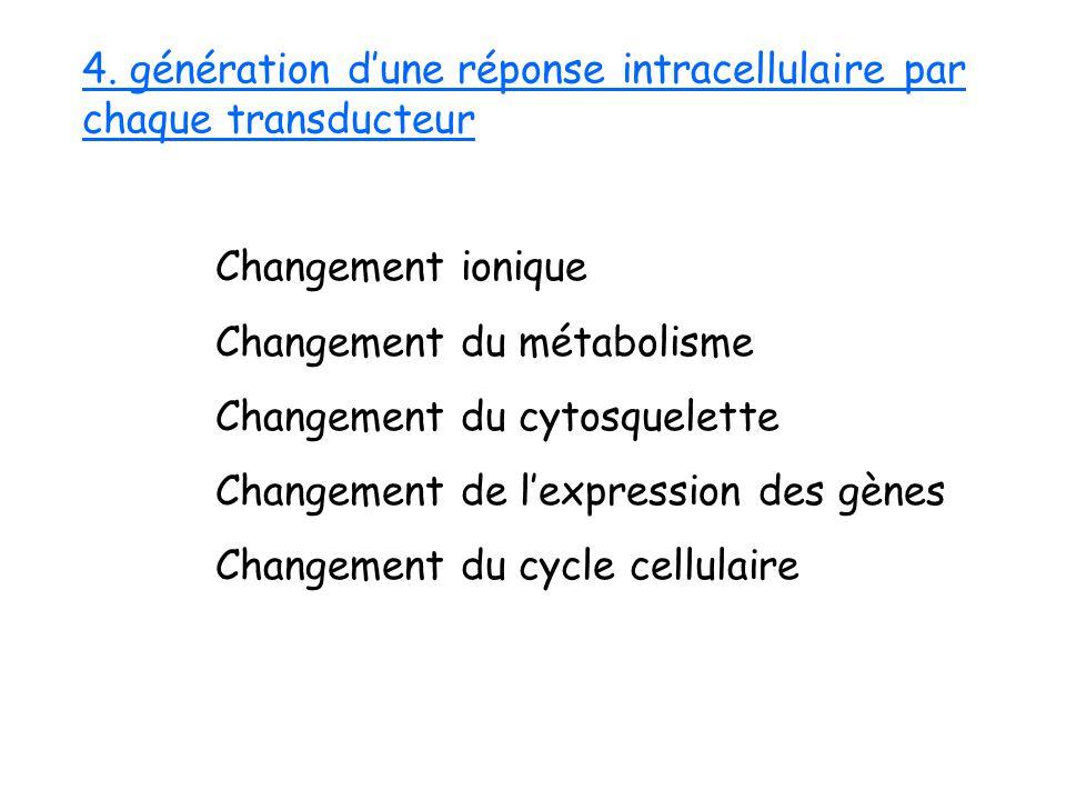 Changement ionique Changement du métabolisme Changement du cytosquelette Changement de lexpression des gènes Changement du cycle cellulaire 4. générat