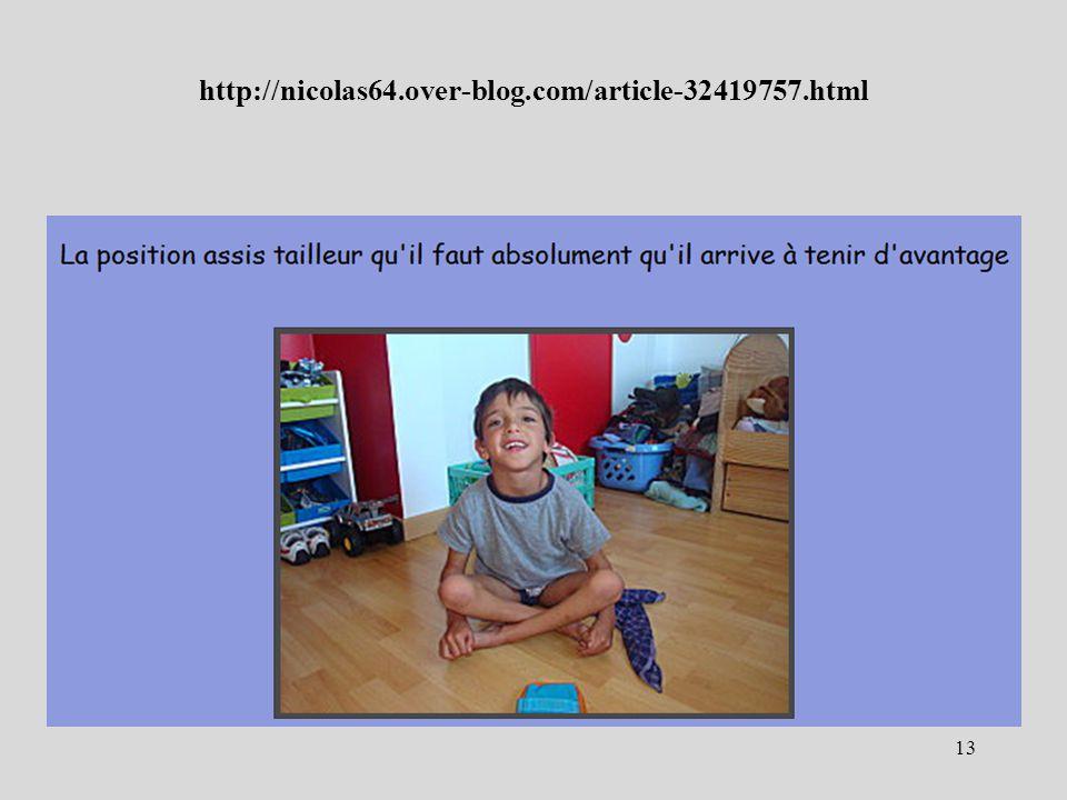http://nicolas64.over-blog.com/article-32419757.html 13
