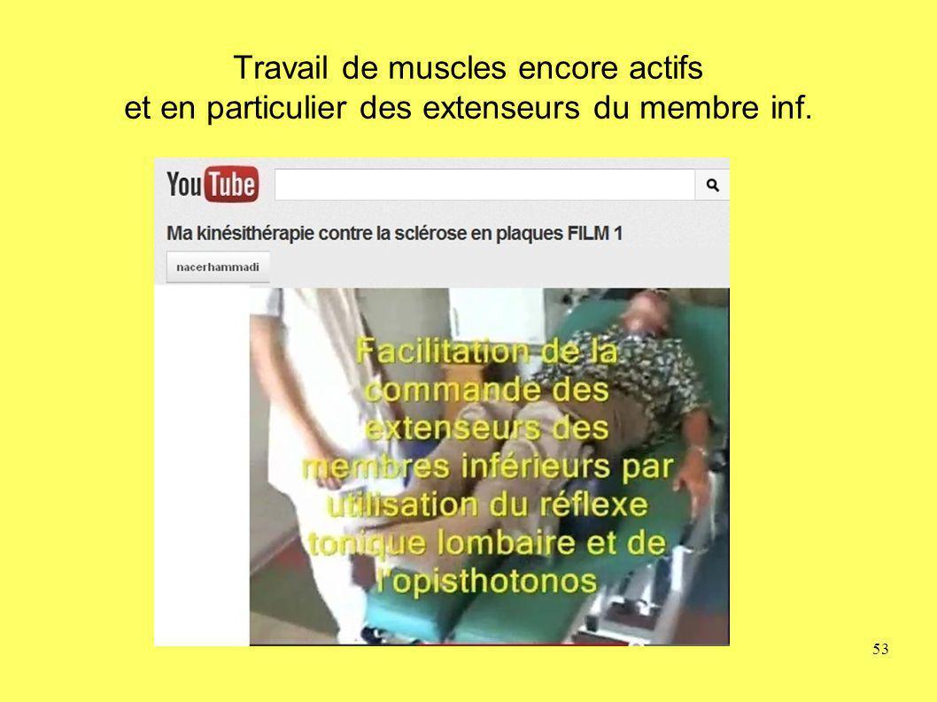 Travail de muscles encore actifs et en particulier des extenseurs du membre inf. 53
