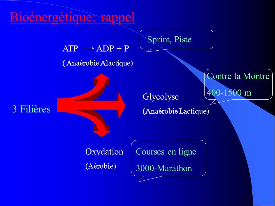 Bioénergétique: rappel 3 Filières ATP ADP + P ( Anaérobie Alactique) Glycolyse (Anaérobie Lactique) Oxydation (Aérobie) Sprint, Piste Contre la Montre 400-1500 m Courses en ligne 3000-Marathon