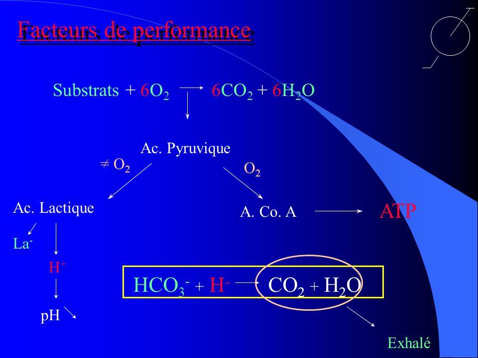 Substrats + 6O 2 6CO 2 + 6H 2 O Facteurs de performance Ac.