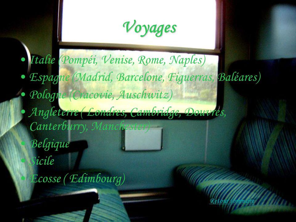 Voyages Italie (Pompéi, Venise, Rome, Naples) Espagne (Madrid, Barcelone, Figuerras, Baléares) Pologne (Cracovie, Auschwitz) Angleterre ( Londres, Cambridge, Douvres, Canterburry, Manchester) Belgique Sicile Ecosse ( Edimbourg)