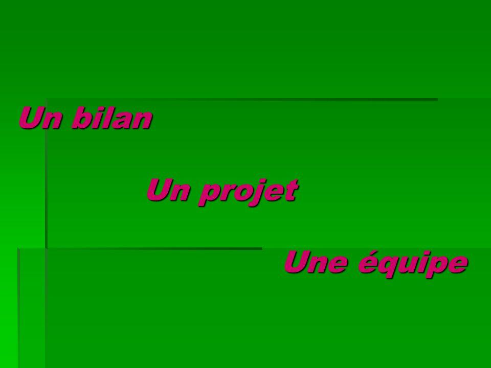 Un bilan Un projet Une équipe