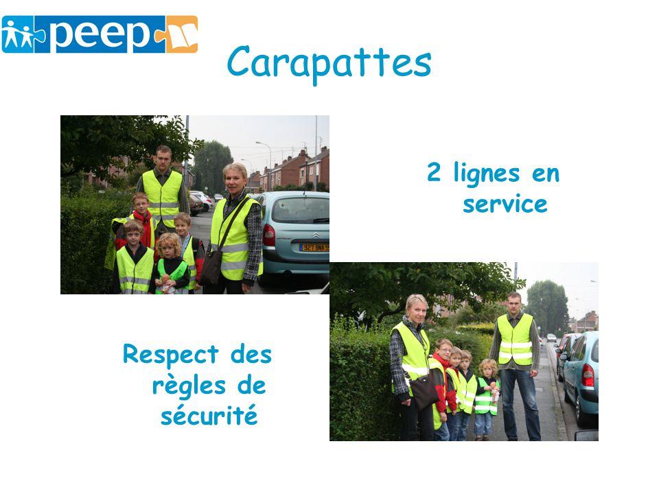 Carapattes 2 lignes en service Respect des règles de sécurité