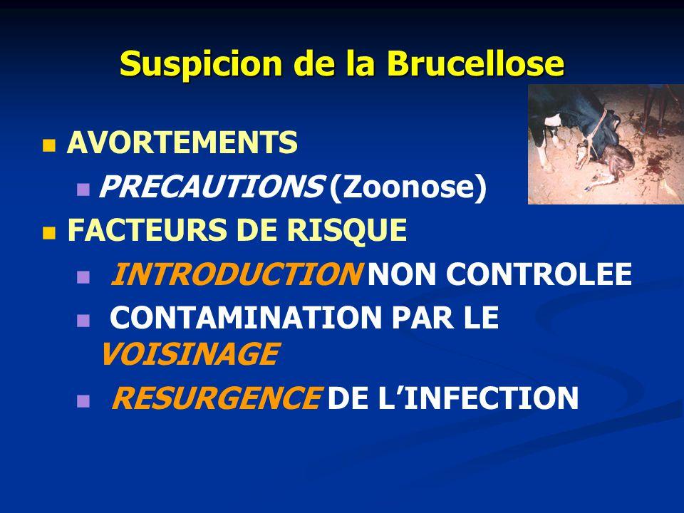 ÉPIDÉMIOLOGIE COMPARÉE Contagio- sité Transmis- sion Mortalité Clavelée++ Contact direct ++ (jeunes) F.C.M.++ Piqûre de culicoîdes ++ (jeunes) F.A.+++
