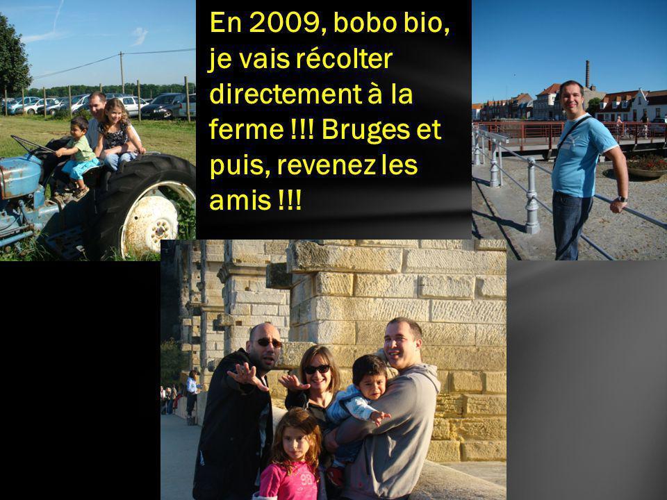 En 2009, bobo bio, je vais récolter directement à la ferme !!! Bruges et puis, revenez les amis !!!