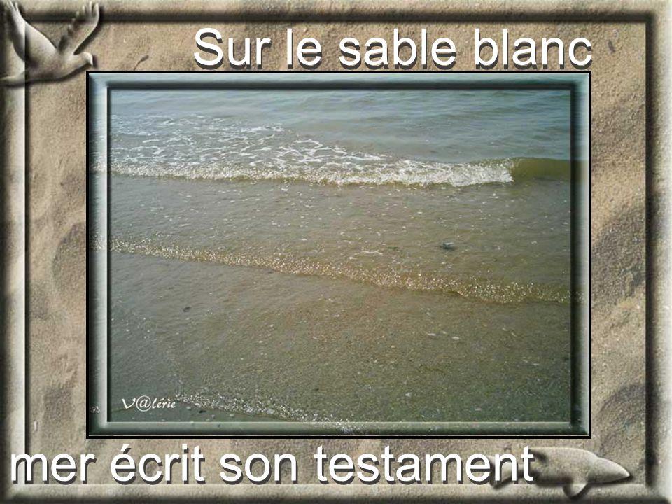 Le Testament de LOcéan Le Testament de LOcéan De Valérie Lejeune