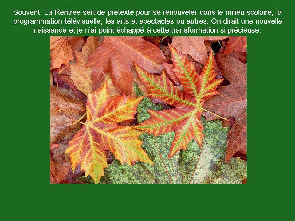 Michael « ekim» Mc Farland Quelque part dans le Canton de Hatley Chanson: Yves Montand, Les Feuilles Mortes Octobre 2005