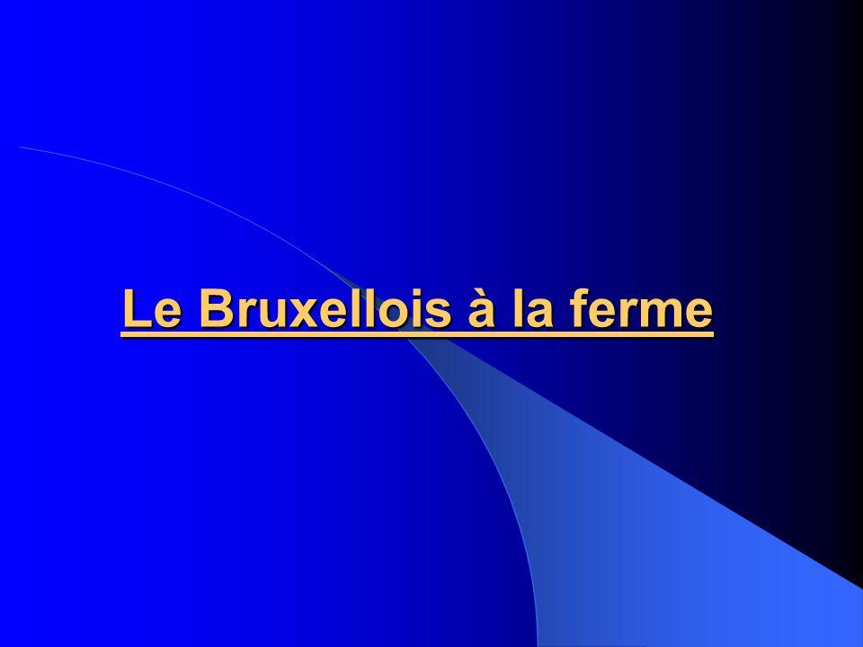 Le Bruxellois à la ferme