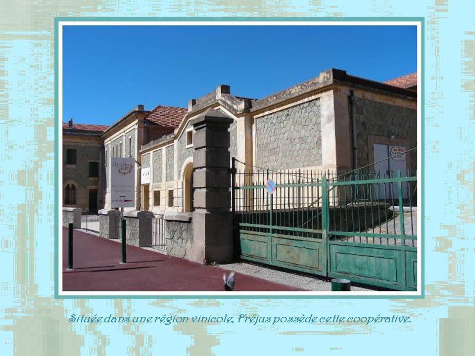 La chapelle Saint-François de Paule, datant du XVIe siècle, doit son nom au fait que la peste aurait été jugulée par ce saint qui accosta à Fréjus ver