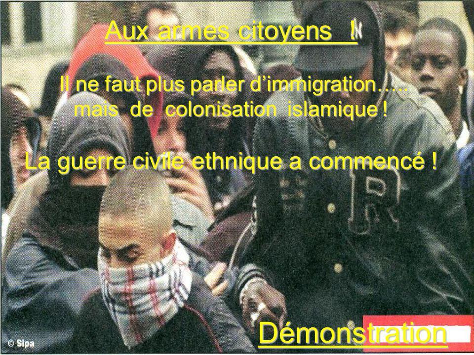 Aux armes citoyens ! Il ne faut plus parler dimmigration….. mais de colonisation islamique ! La guerre civile ethnique a commencé ! Démonstration