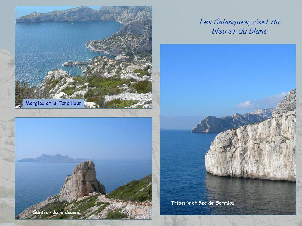 Il est constitué de deux parties : Marseilleveyre et Puget Marseilleveyre, à louest (432 m). Son sommet faisait partie dune chaîne de postes de guet,