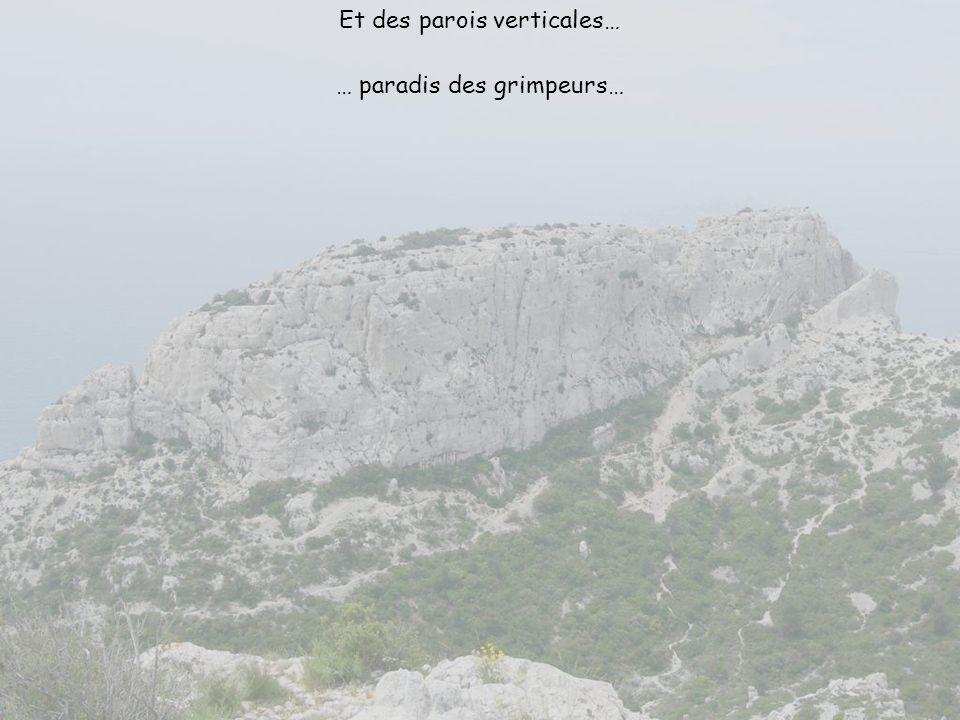 Vallon du Miougranier Vallon de la Garenne Vallon de lAgneau Vallon de Sainte Marthe Couloir du Candélon