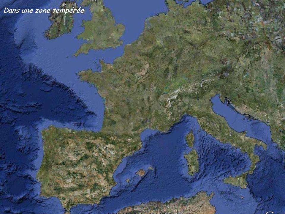 Rocher Saint Michel et rocher des Goudes Crêt de Saint Michel Les lames et le rocher des Goudes Tête du trou du chat Paroi des Toits