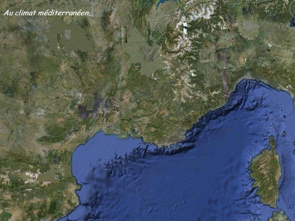 La Grande Candelle et la ConcaveLa Grande Candelle et le Torpilleur La Grande CandelleLarête de Marseille…… et son pas