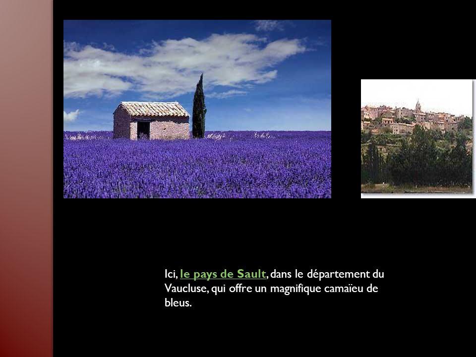Ici, le pays de Sault, dans le département du Vaucluse, qui offre un magnifique camaïeu de bleus.le pays de Sault