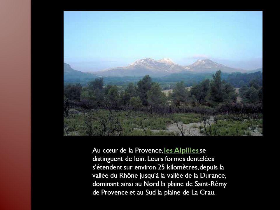 Au cœur de la Provence, les Alpilles se distinguent de loin.