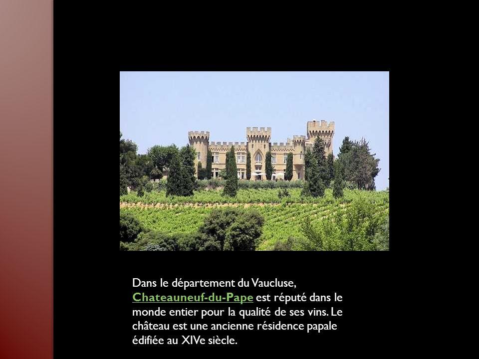 Dans le département du Vaucluse, Chateauneuf-du-Pape est réputé dans le monde entier pour la qualité de ses vins.