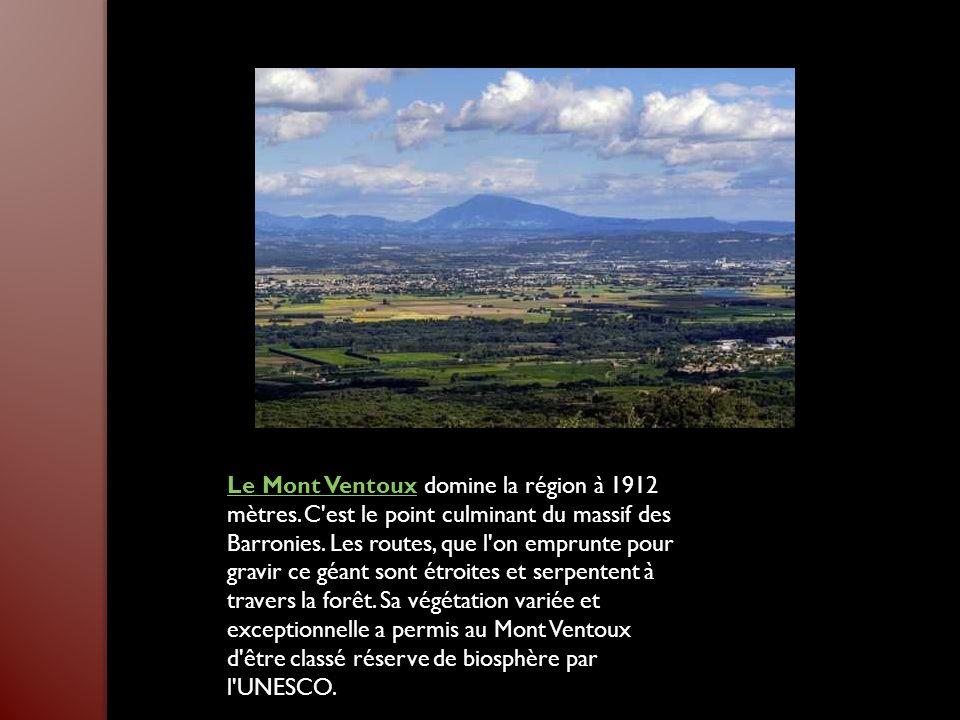 Le Mont VentouxLe Mont Ventoux domine la région à 1912 mètres.