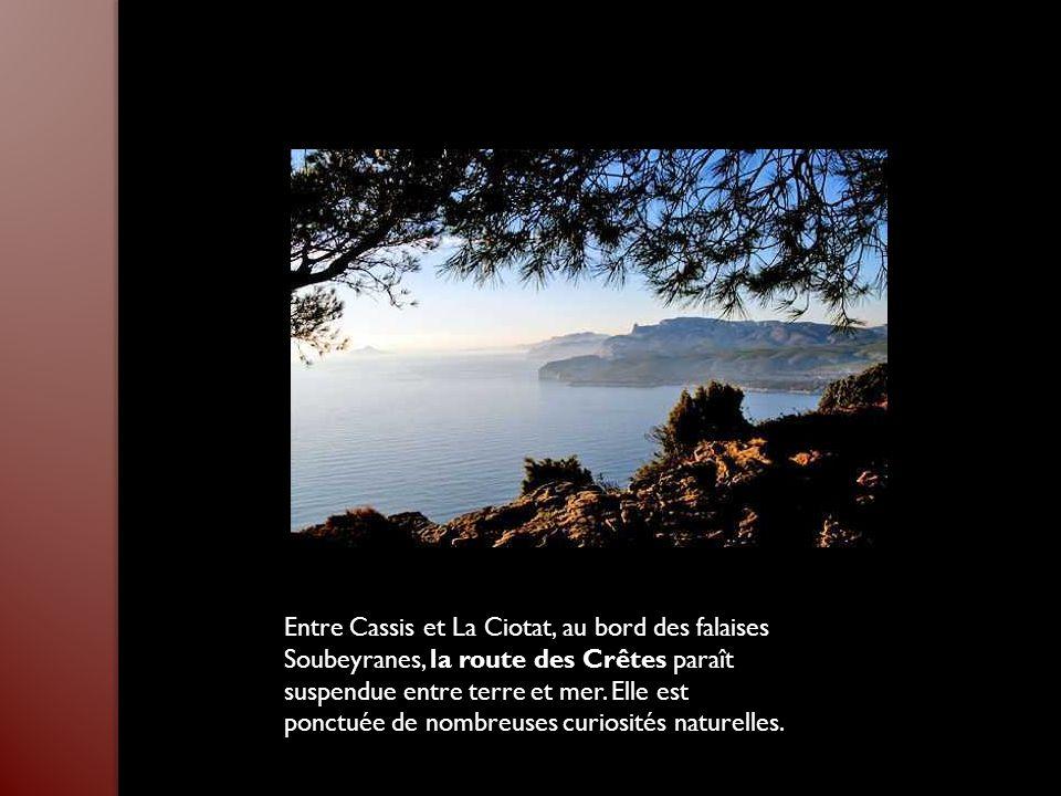 Bien que Saint-Rémy-de-Provence soit la ville la plus connue des Alpilles, elle a su garder son caractère de village provençal authentique. Considérée