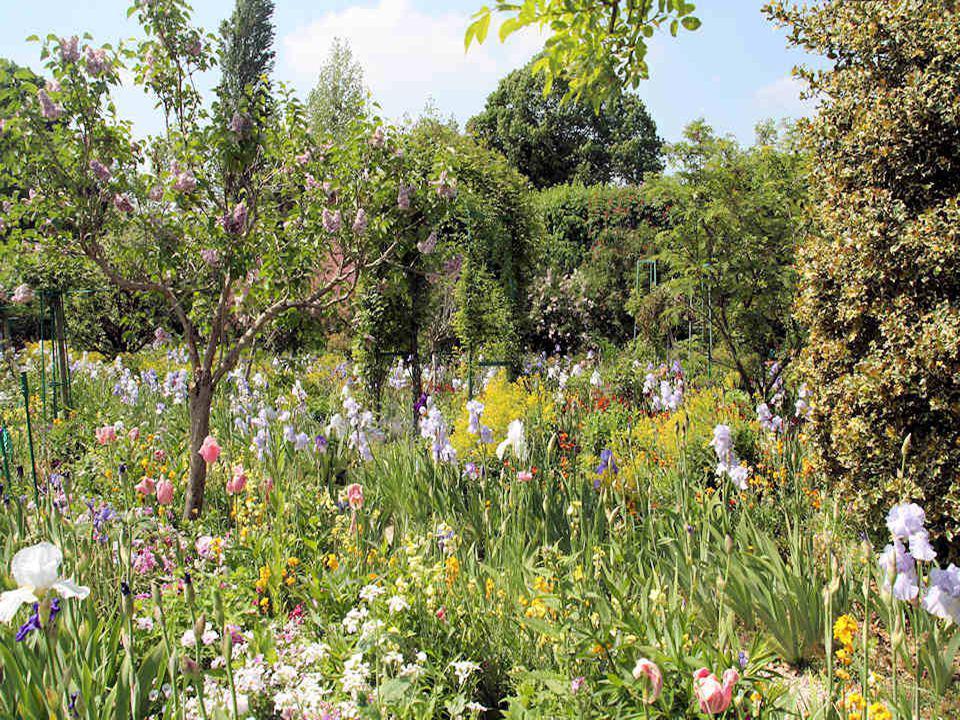 Le jardin de Monet foisonne de fleurs en tous genres ce qui peut donner une impression de « fouillis » mais ne nous y trompons pas, il y a une belle h