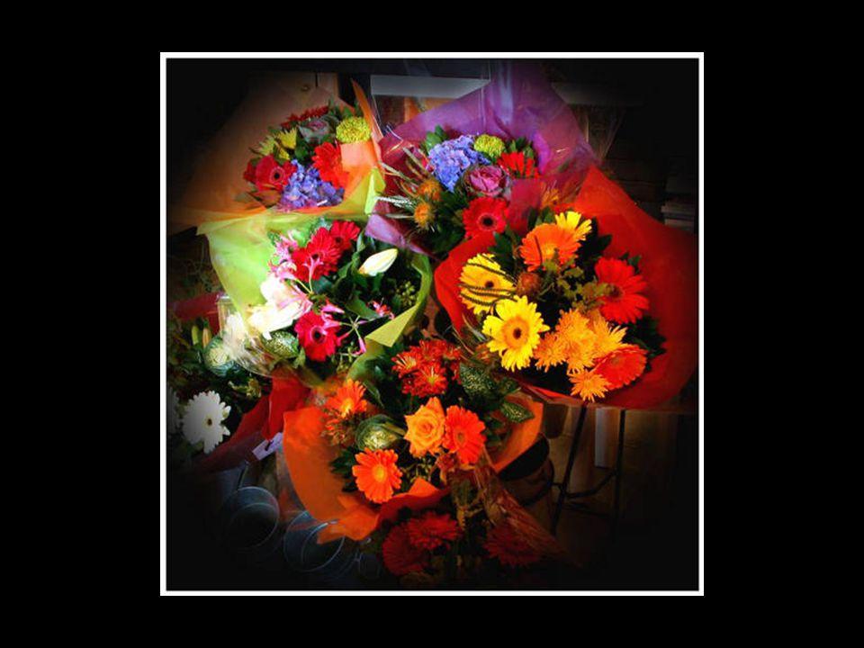 Un bouquet de fleurs, tu m as offert gentiment, Est-ce pour te faire pardonner, ou pour me faire plaisir seulement.