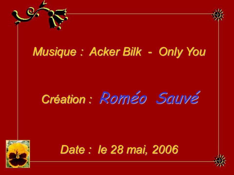 Musique : Acker Bilk - Only You Création : Roméo Sauvé Date : le 28 mai, 2006
