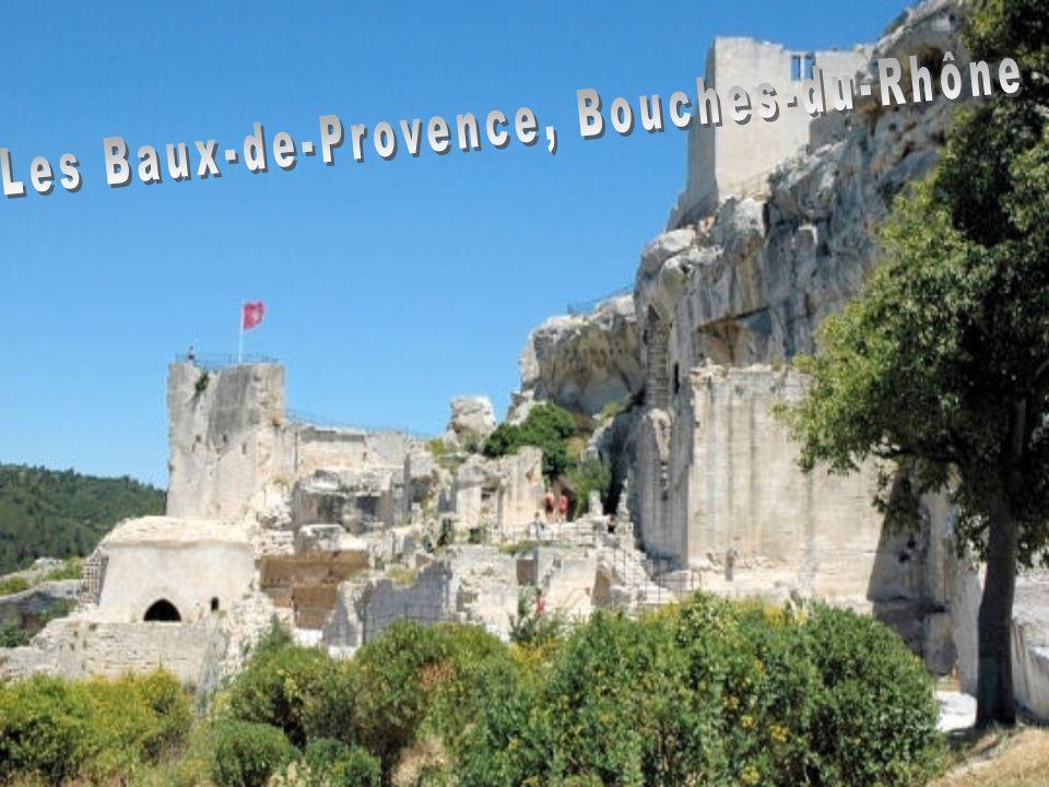 Dans les Gorges de l'Aveyron se dresse la forteresse de Najac avec son château