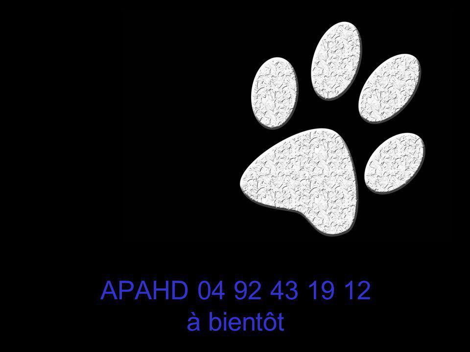 APAHD 04 92 43 19 12 à bientôt