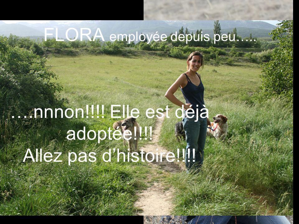 ….nnnon!!!! Elle est déjà adoptée!!!! Allez pas dhistoire!!!! FLORA employée depuis peu…..