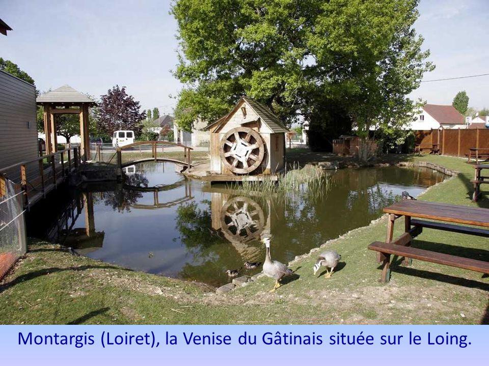Clisson (Loire Atlantique) bordée par la Sèvre nantaise et la Moine.
