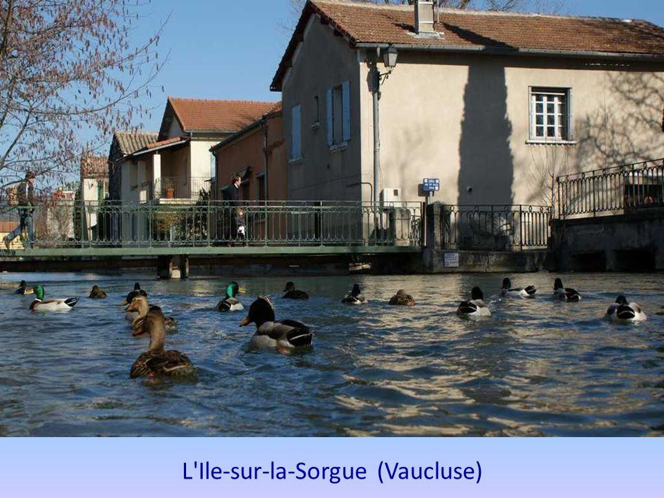 Crécy-la-Chapelle (Seine et Marne) La Venise Briarde