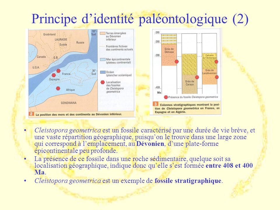 Principe didentité paléontologique (2) Cleistopora geometrica est un fossile caractérisé par une durée de vie brève, et une vaste répartition géograph