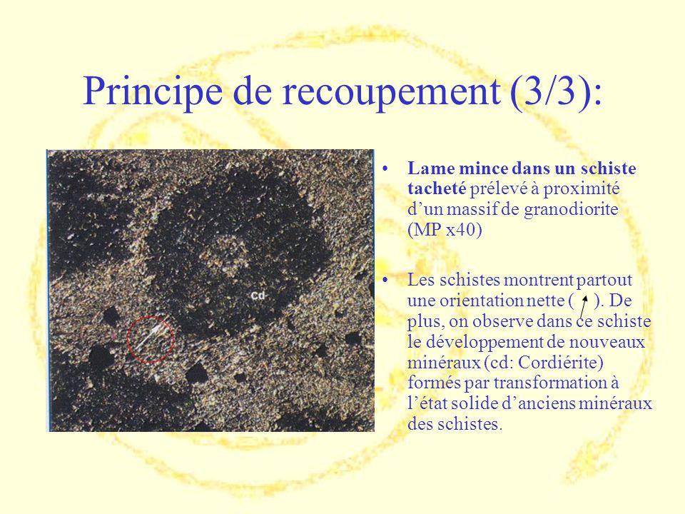 Principe de recoupement (3/3): Lame mince dans un schiste tacheté prélevé à proximité dun massif de granodiorite (MP x40) Les schistes montrent partou
