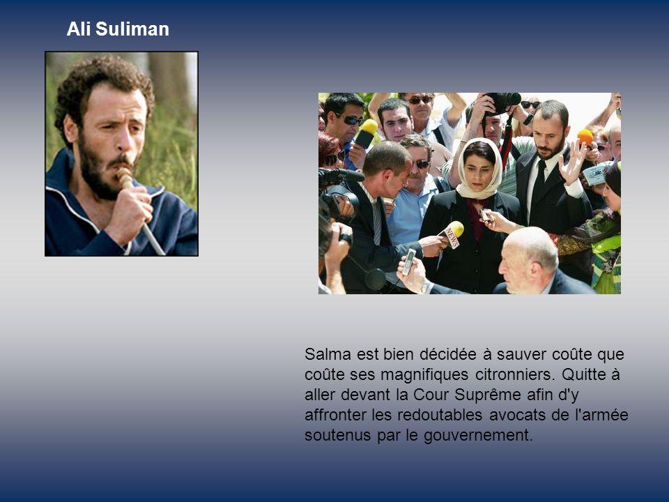 Le ministre israélien de la Défense ordonne à Salma de raser tous ses oliviers, héritage de son père, sous prétexte que des terroristes pourraient s y cacher dedans.