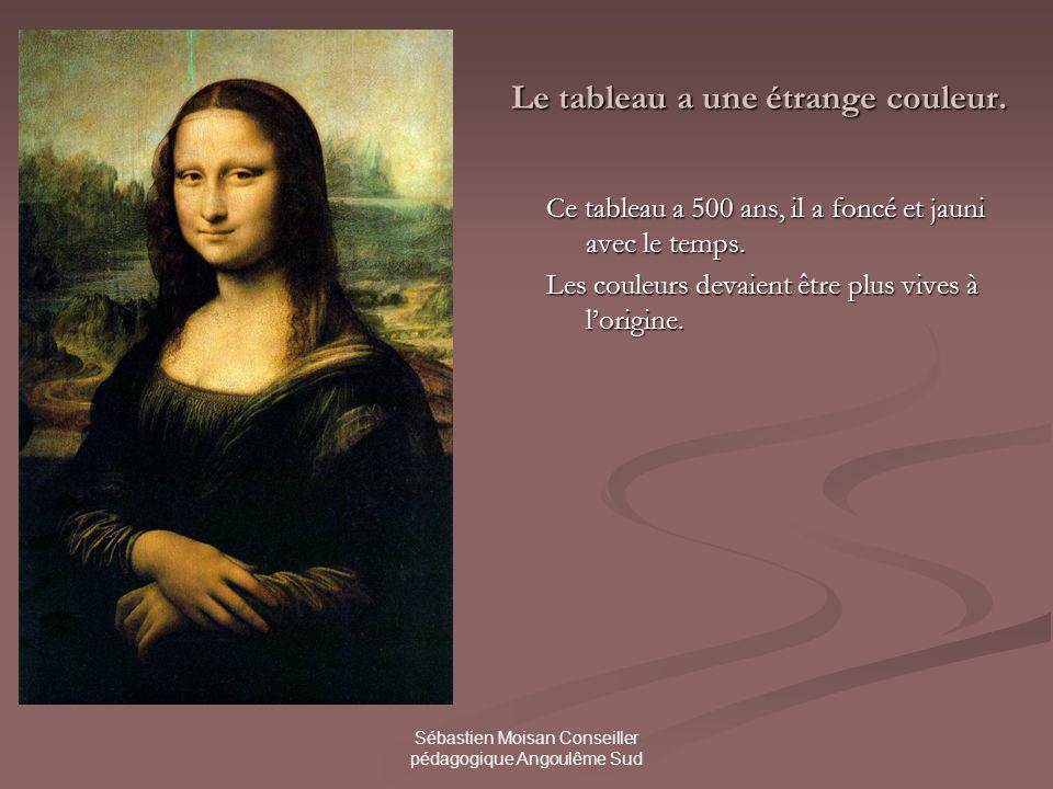 Sébastien Moisan Conseiller pédagogique Angoulême Sud Le tableau a une étrange couleur.